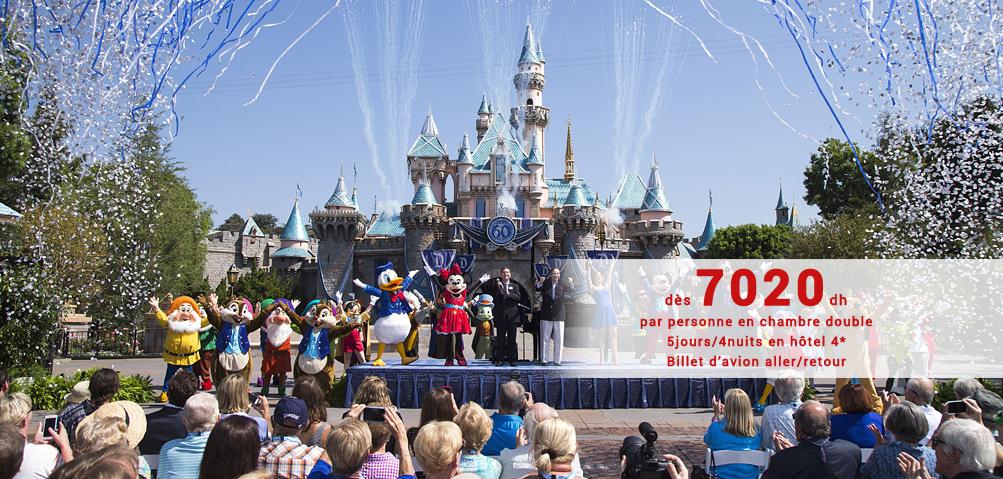 Disneyland 4*